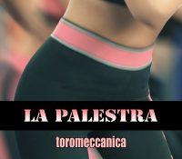 Toromeccanica – La Palestra